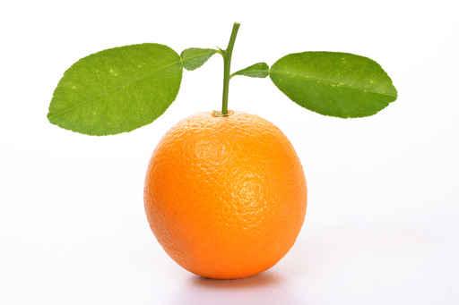 Orange fruit with leaves
